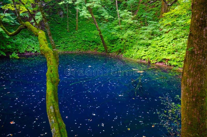 Lake Juniko, Japan. Stock Photography