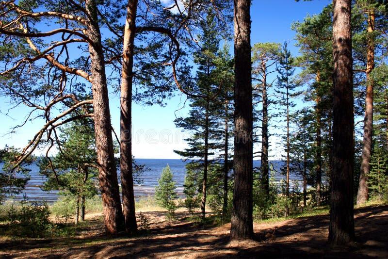 Lake Ladoga royalty free stock photos