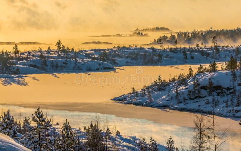 Lake Ladoga i förkylningen övervintrar trees för snow för sky för lies för frost för mörk dag för bluefilialer Dimma på solnedgån royaltyfria foton