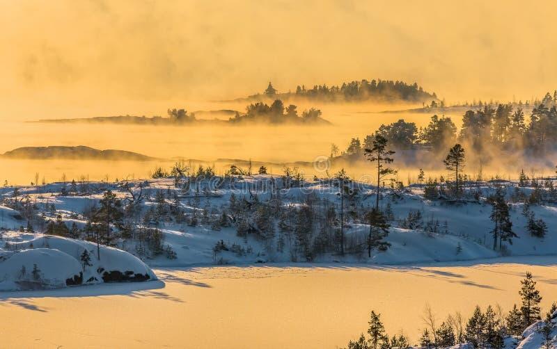 Lake Ladoga i förkylningen övervintrar trees för snow för sky för lies för frost för mörk dag för bluefilialer Dimma på solnedgån arkivfoto
