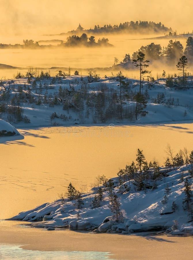 Lake Ladoga i förkylningen övervintrar trees för snow för sky för lies för frost för mörk dag för bluefilialer Dimma på solnedgån royaltyfria bilder