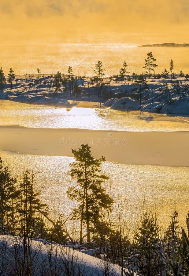 Lake Ladoga i förkylningen övervintrar trees för snow för sky för lies för frost för mörk dag för bluefilialer Dimma på solnedgån arkivfoton