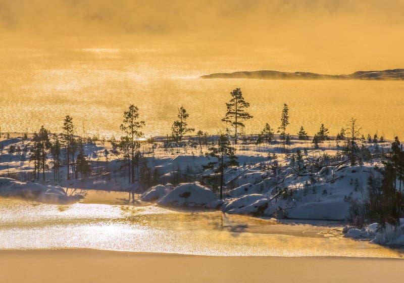 Lake Ladoga i förkylningen övervintrar trees för snow för sky för lies för frost för mörk dag för bluefilialer Dimma på solnedgån arkivbilder