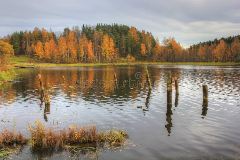 Lake Ladoga, Russia. Ladoga lake in autumn, nature in Russia stock images