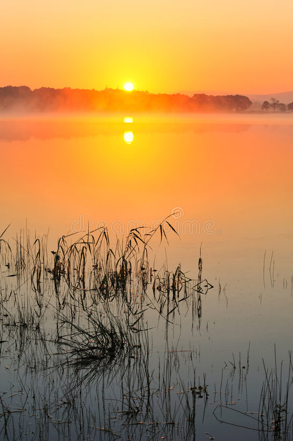 Download Lake Leane stock photo. Image of lake, color, morning - 6582286