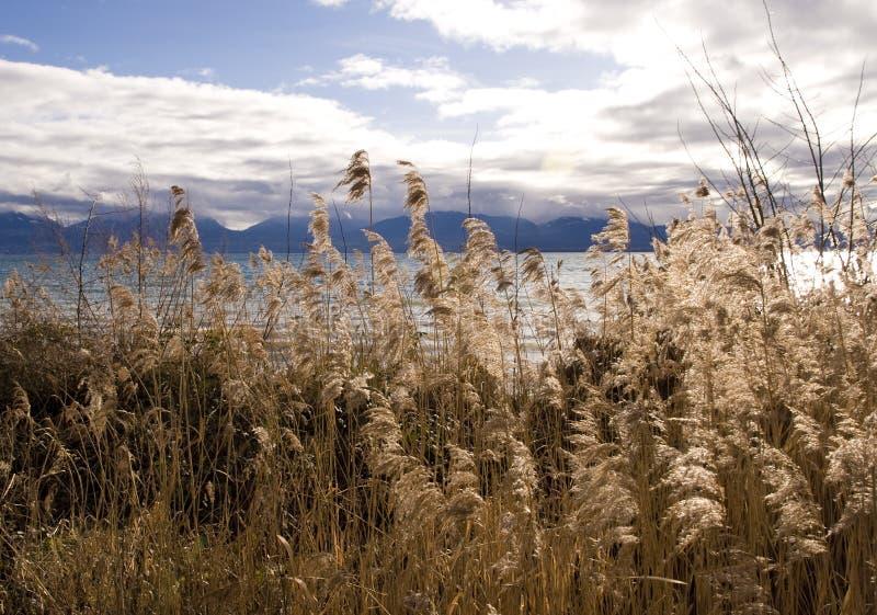 Download Lake Leman Stock Images - Image: 23206924