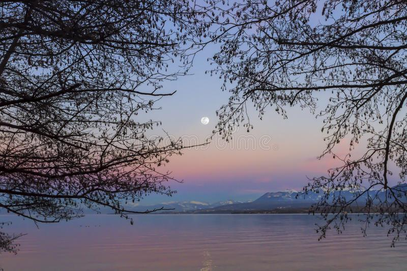 Lake Leman view by sunset, Excenevex, France. View of Lake Leman behind trees by sunset with full moon, Excenevex, France royalty free stock image