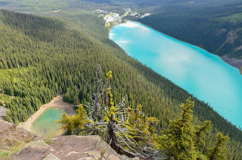 Lake Louise from above 4. Forest, water and landscape of Lake Louise from above royalty free stock images