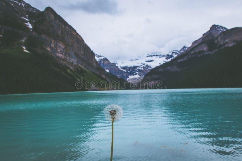 Lake Louise, Alberta, Canadá imágenes de archivo libres de regalías