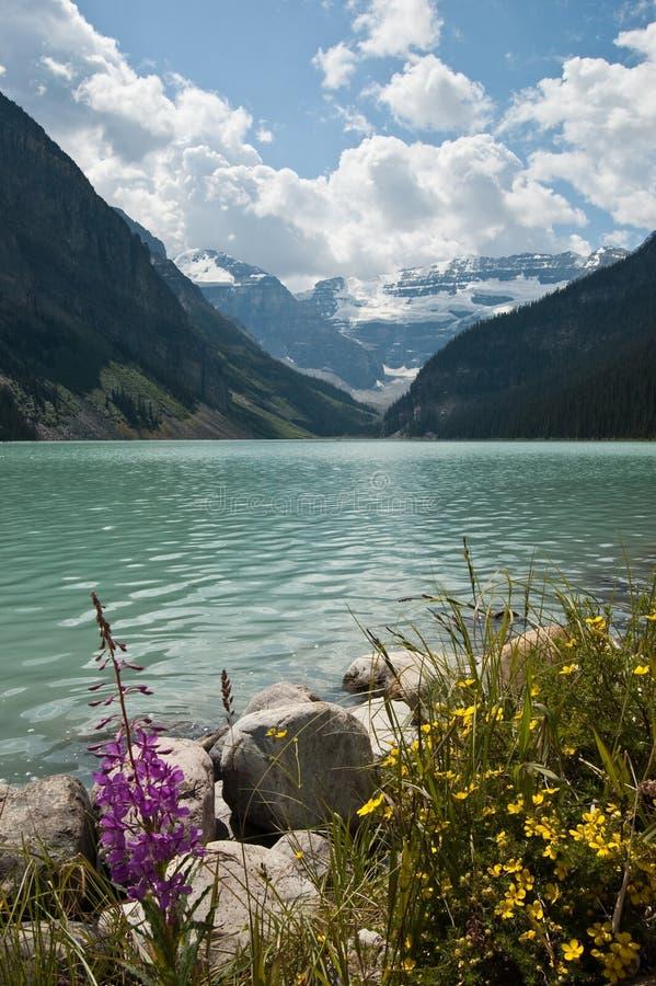 Lake Louise, Alberta, Kanada stockbilder