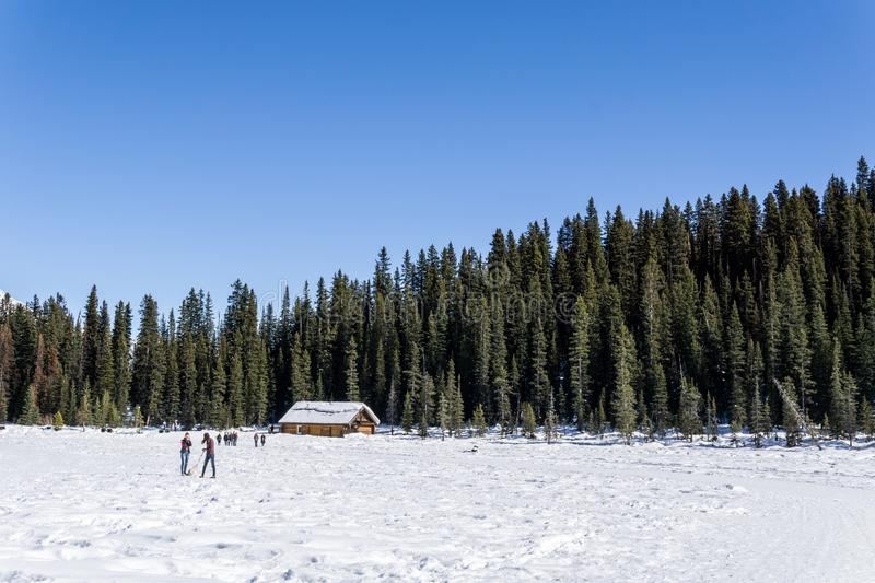 LAKE LOUISE, CANADA - MARCH 20, 2019: frozen lake in alberta with people on ice. Winter cold beautiful landscape mountain nature sky snow white background stock photos