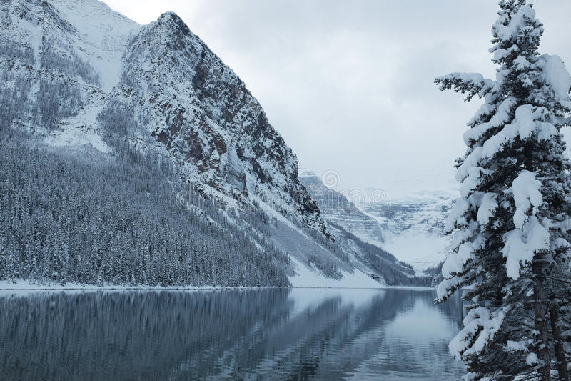 Lake Louise in inverno immagine stock