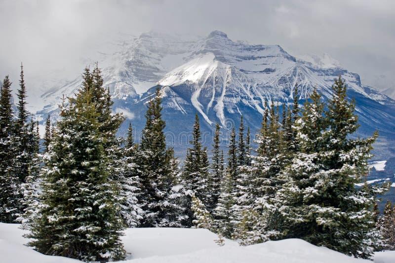 Lake Louise ski resort royalty free stock images
