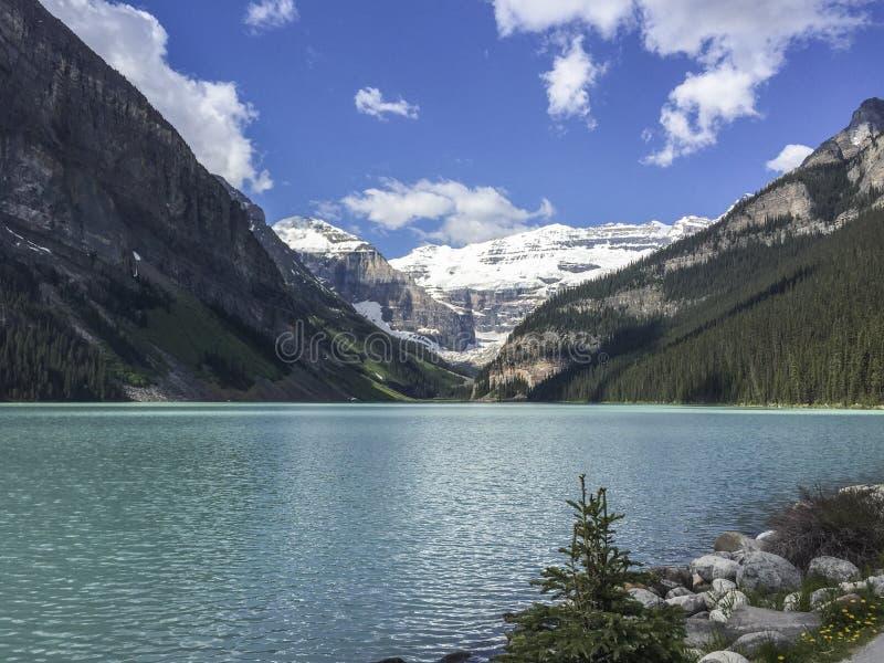 Lake Louise. View of the emerald Lake Louise royalty free stock photos