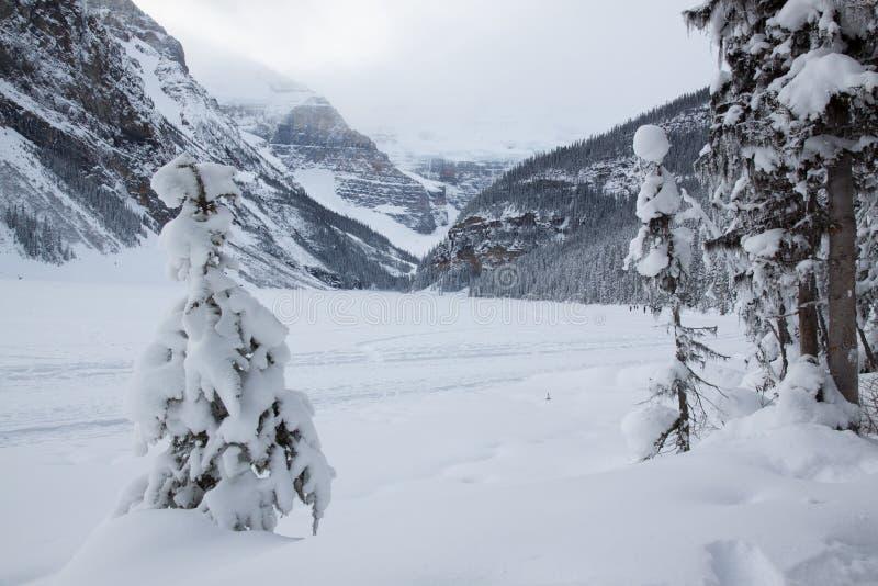 Lake Louise royalty free stock photo