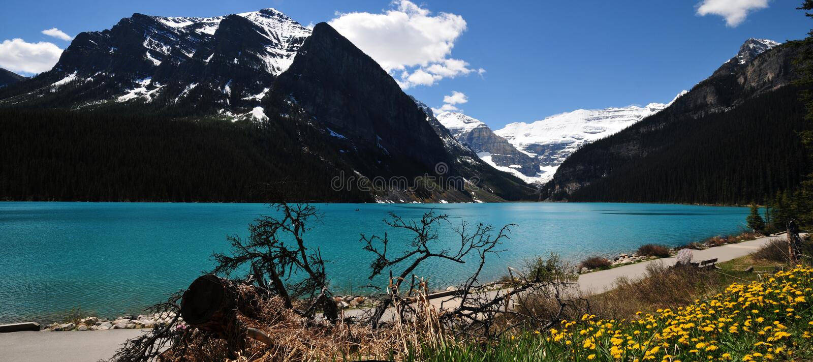 Panoramic view of naturally beautiful Lake Louise, Alberta. One of the most amazing and beautiful lakes of the world. Lake Louise is world famous for its royalty free stock photo