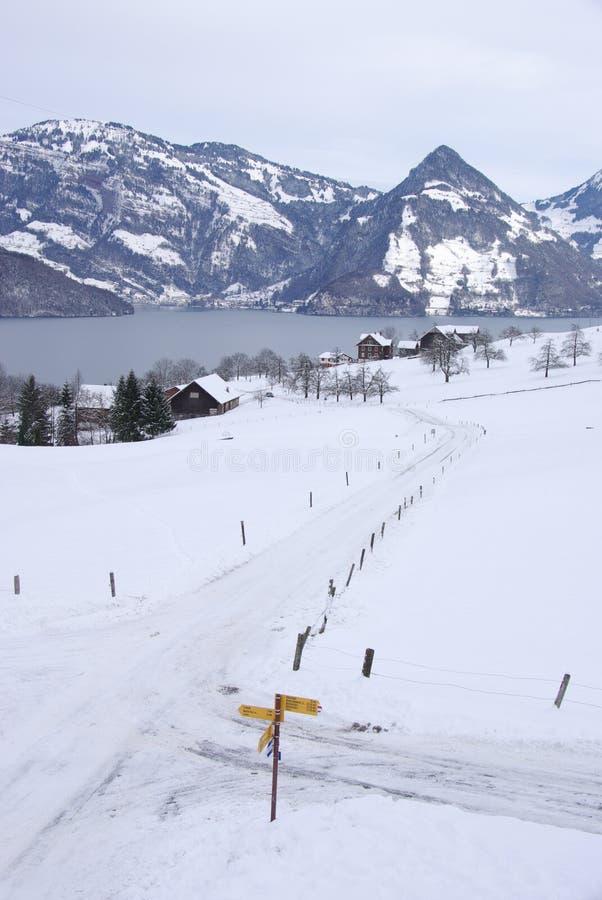 Lake Lucerne arkivbild