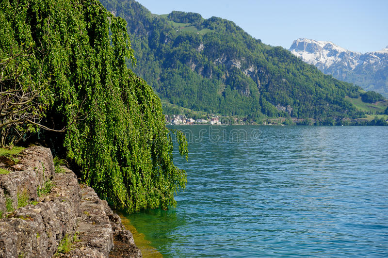 Lake Lucerne royaltyfri bild