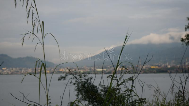 Lake Lut Tawar, Gayo Highlands, Central Aceh District, Aceh. Grass and lake Lut Tawar, Gayo Highlands stock images