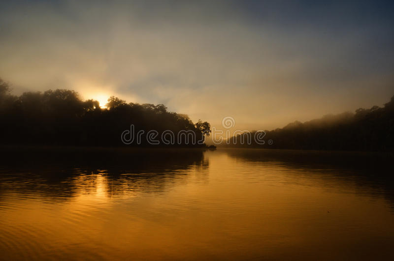 Lake in manu jungle, peru. Sunset lake in Manu jungle in peru royalty free stock photos
