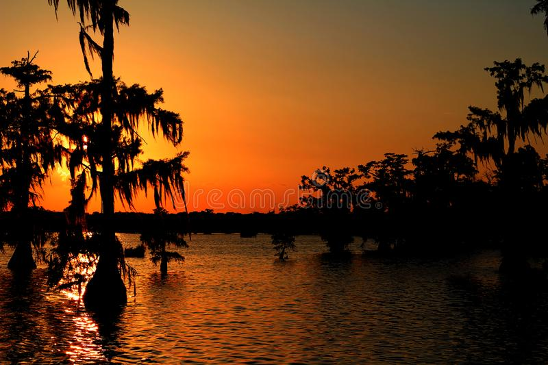 Lake Martin Golden Sunset in Southern Louisiana. Sun Shining Through Cypress Trees, Highlighting the moss that covers them. Multicolored Sky royalty free stock photo