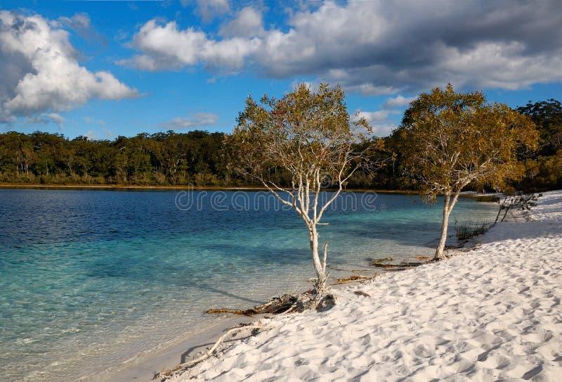 Lake McKenzie on Fraser Island, Australia. A picture of the beach of Lake MacKenzie on Fraser Island in Queensland, Australia royalty free stock images