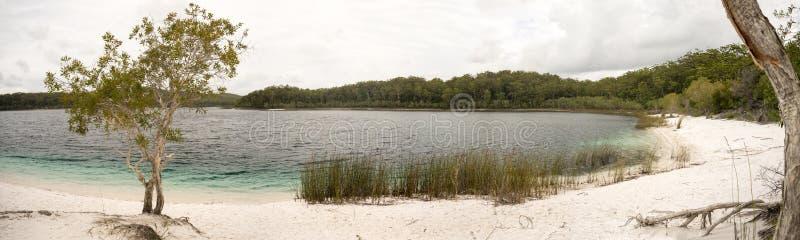Lake McKenzie Fraser Island Australia Panorama stock photo