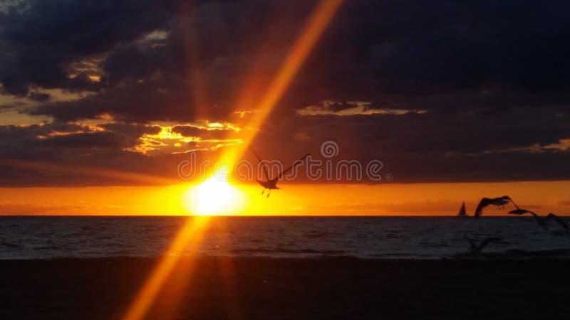 Lake Michigan royalty free stock photography