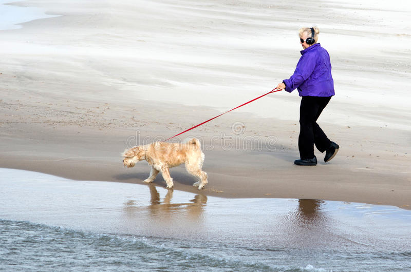 Download Lake Michigan Dog Walker Editorial Stock Photo - Image: 28289788