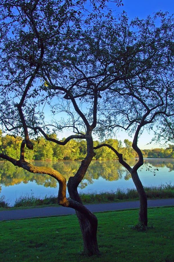lake minneapolis royaltyfria foton
