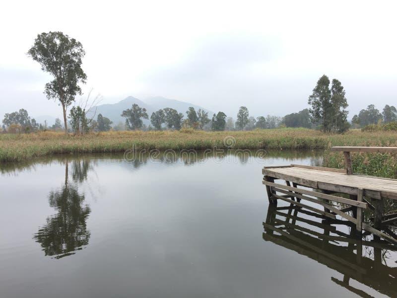 Lake mirror royalty free stock photography