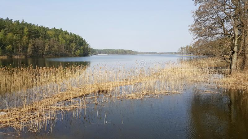 Lake in Moletai, Lithuania. Spring in Lithuania. Kamuzelis lake meets Siesartis lake in Moletai, Lithuania. Calm place for nature lovers royalty free stock images
