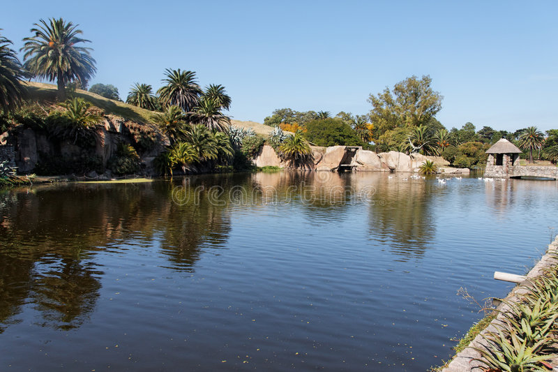 lake montevideo park arkivfoto