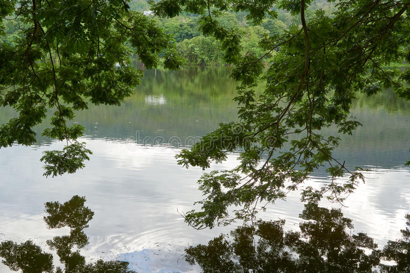 A lake, in the mountain area and have blue sky at background royalty free stock photos