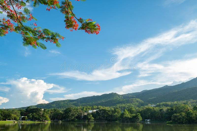 Lake and mountain scenery view. With beautiful sky, there are branch tree as foreground,landscape, background, blue, bright, calm, clean, cloud, copy, day stock photography