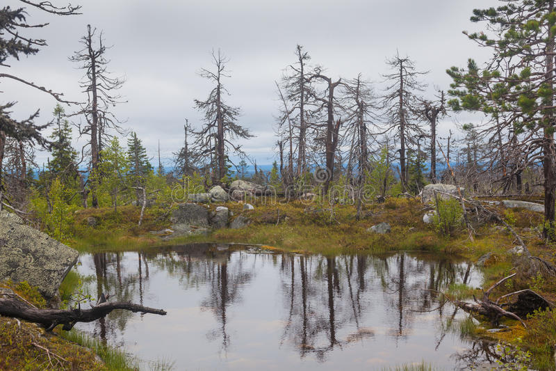 Lake on Mountain. Of the Vottovaara in Karelia, Russia stock image
