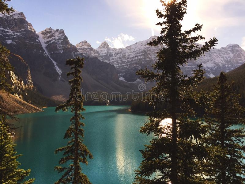 Lake Mountains Trees Mountain Lake Landscape stock photography