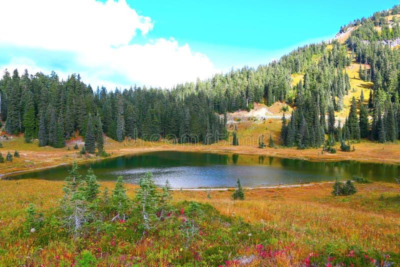 Lake and nature during fall at Mount Rainier park , Washington stock photo