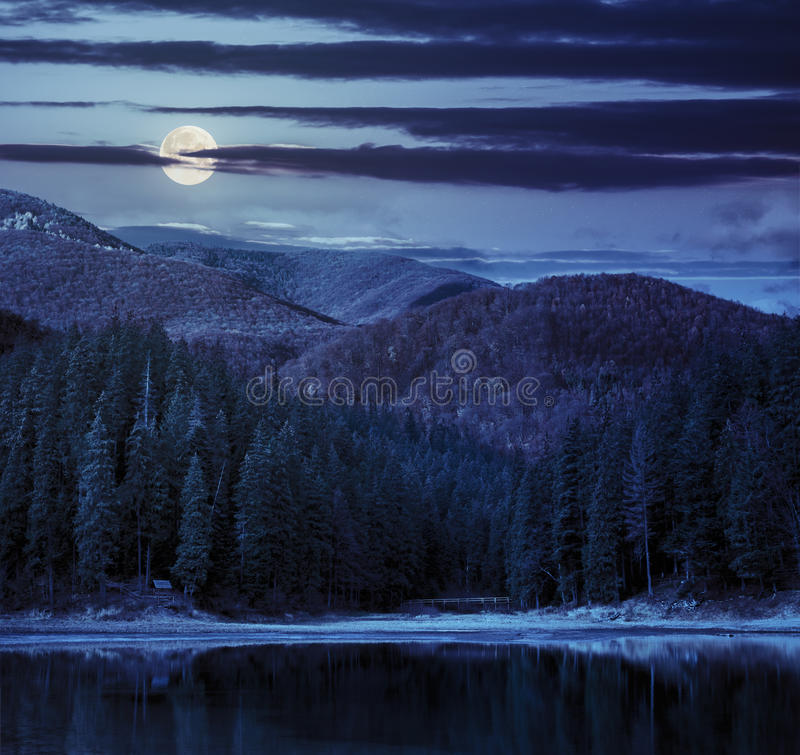 Lake near the mountain in pine forest at night royalty free stock photo