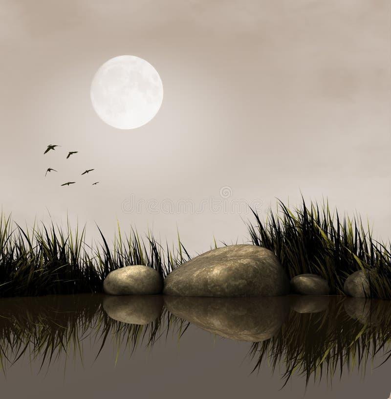 Download Lake at night stock illustration. Illustration of birds - 21986652