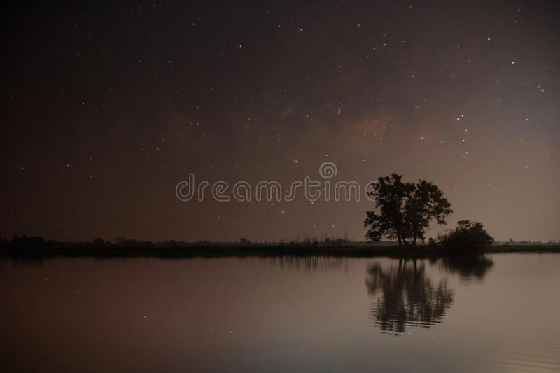 Lake in the night with the stars in the sky and the reflection of the trees and the sky. Landscape background royalty free stock photo