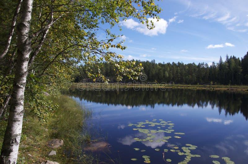 Lake in Nuuksio NP, Finland. Lake in Nuuksio National Park, Finland stock photo