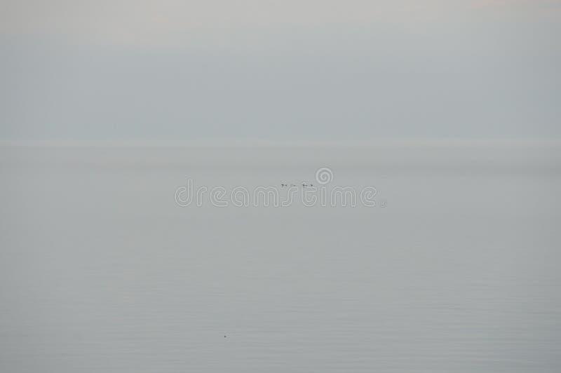 Lake Ontario - Burlington - Канада стоковое фото
