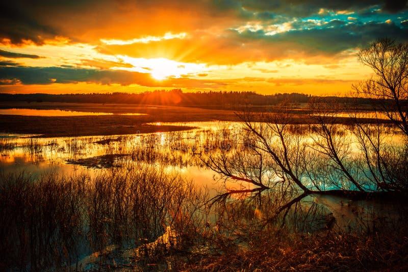 Lake på solnedgången royaltyfri fotografi