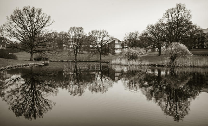 Lake in the park, Aarhus University, Denmark. The barren branches of single trees are reflected in the calm water surface of a lake at the campus of Aarhus stock photo