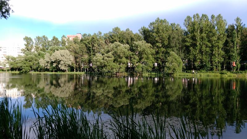 The lake in the Park. A small, beautiful, picturesque lake is located in the center of the Park in good weather stock image