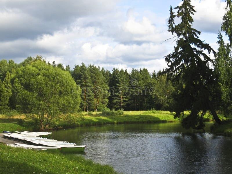 Lake in park, Tsarskoye selo, Russia royalty free stock photos