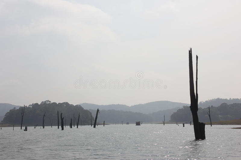 Lake in the Periyar National Park, India stock photos