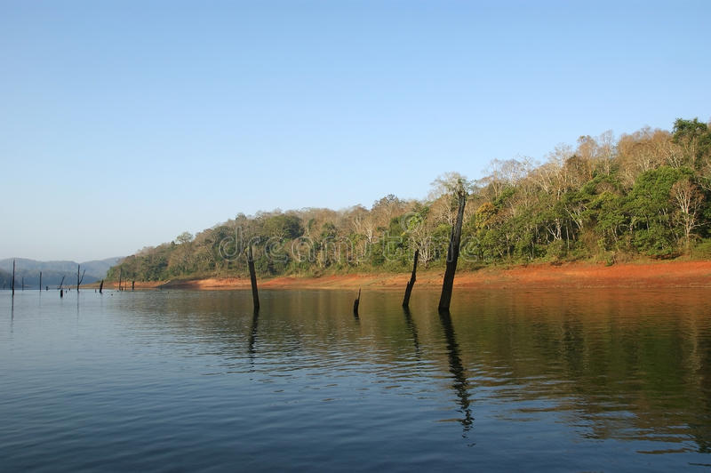 Lake, Periyar National Park, Kerala, India royalty free stock photo