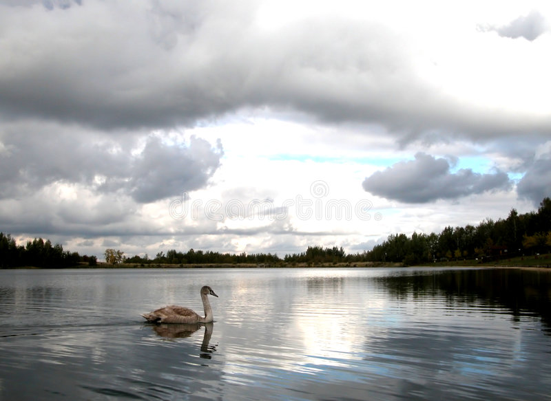 Lake perspective stock photography